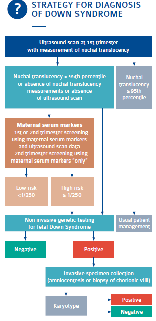 Unique Maternal Blood Dna Markers >> Cell Free Dna Screening For Trisomy 13 18 21